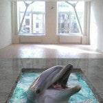 Наливной пол с 3д изображением