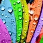 Влагоустойчивые материалы для отделки стен ванных комнат