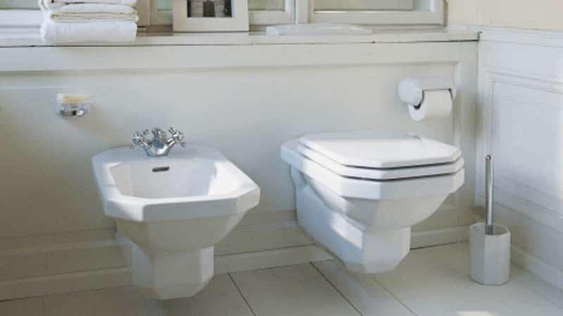 Выбор между биде и гигиеническим душем